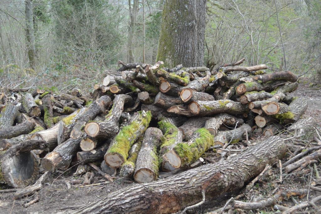 PCW5000 - log pile