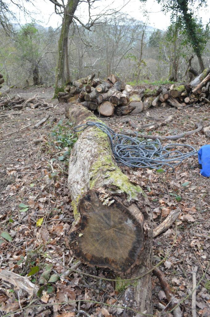 PCW5000 - large log